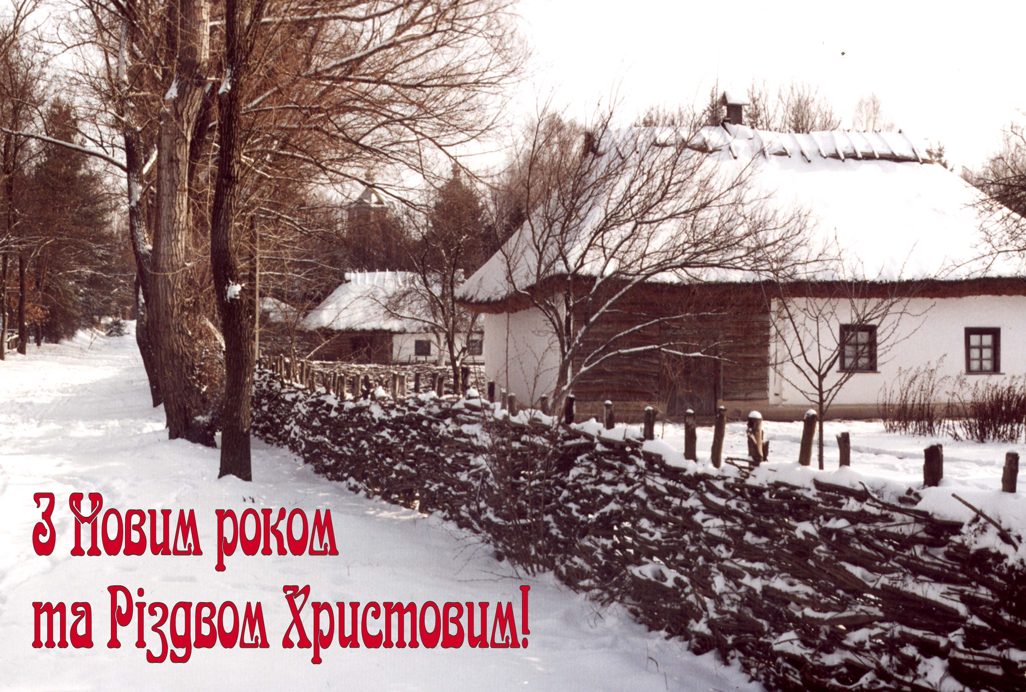 NovyjRik1